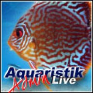 AQLive